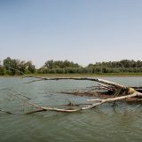 Il fiume Tevere da Poggio Mirteto Scalo a Collevecchio, estate 2017, foto di Riccardo Cattani
