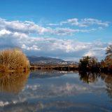 Il Tevere d'inverno guardando verso Poggio Mirteto - foto di Alessandra Finiti