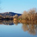 Il Tevere d'inverno guardando verso Stimigliano - foto di Alessandra Finiti
