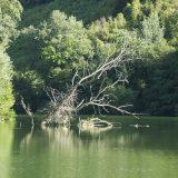 Il fiume Tevere da Poggio Mirteto Scalo a Collevecchio, estate 2017, foto di Teresa Mancini